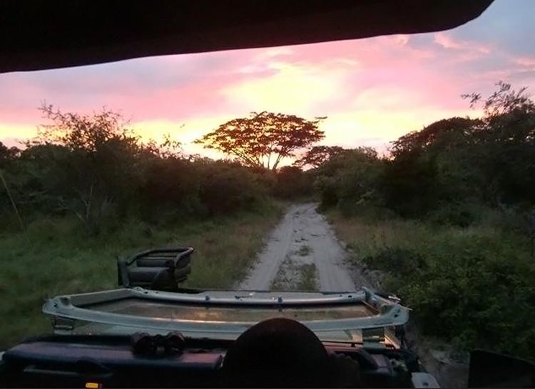 Dive Safari South Africa