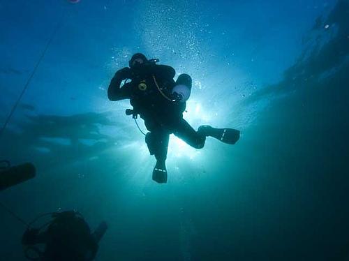 Scuba Dive South Africa